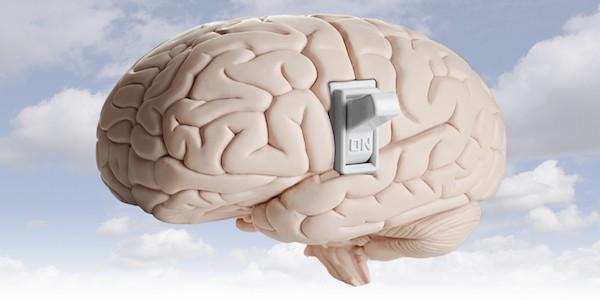 El deseo de comer localizado en el cerebro